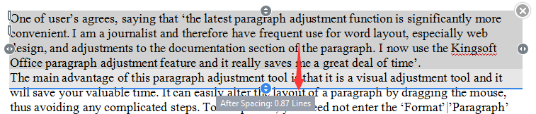 wps special paragraph layout tool
